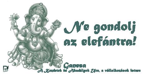 ne-gondolj-az-elefantra